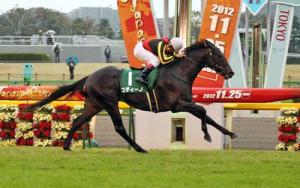 【競馬】 コディーノ、朝日杯FS参戦が決定…札幌2歳S・東スポ杯2歳S勝ち馬