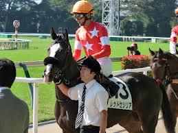 【競馬】 阪神ジュベナイルF(G1)3着のレッドセシリアが骨折 全治6カ月の診断で休養へ