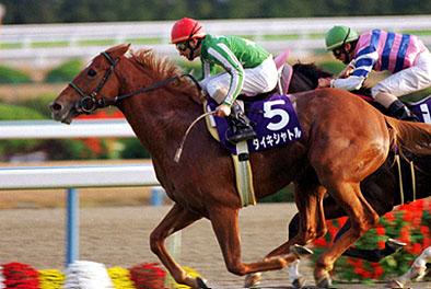 【競馬】 過去20年のスプリンターズS勝ち馬がで天皇賞(春) 勝つのは?