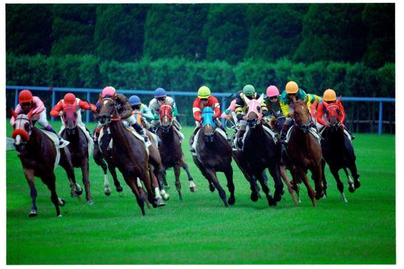 【競馬】 競馬好きの日常にありがちなこと