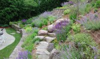 Hillside Landscaping Pictures Landscaping ideas-great ...