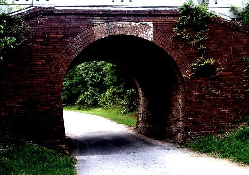 【怖い話】廃道の先に進んでみるとトンネルの出口をまたぐように、鳥居が建っていた