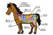 馬刺しを食べて長寿日本一になった 「長野県」