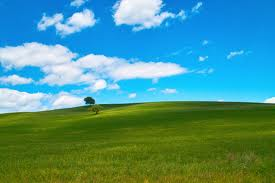 【マジキチ】Hなお店行ったんだけど気づいたら草原を走ってたwwwwwwwwww