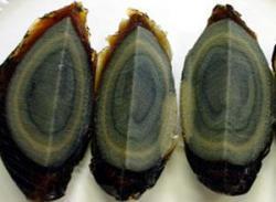 「毒ピータン」30社に生産停止…工業用硫酸銅が使われていた疑い…中国