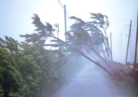 大型台風がやってきてるのに定時が過ぎてるはずの父親が帰ってこないし連絡がつかない