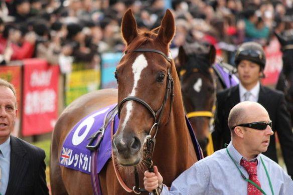 【競馬】 外国人調教師「日本の馬場デンジャラスすぎワロタw」