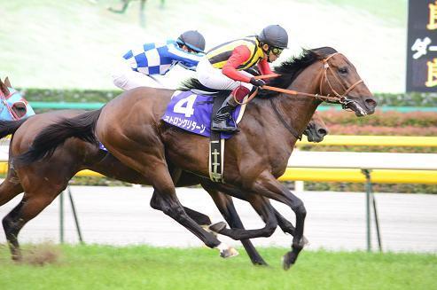 【競馬】 ストロングリターンが引退、ブリーダーズSSで種牡馬入り 父シンボリクリスエス