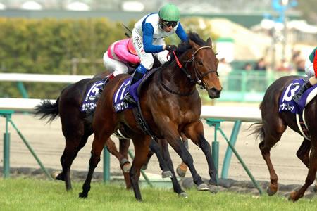 【競馬】 ジェンティルドンナよりロードカナロアを顕彰馬にすべきだよね?