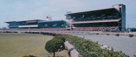 【競馬】 名古屋競馬、9億超の黒字 来年も存続が決定