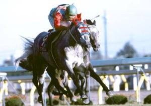 【競馬】 最も能力・実績の割に地味な馬といえば?