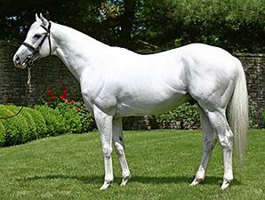 【競馬】 11年全米2歳王者の種牡馬ハンセン、韓国に売却される 前馬主のハンセン氏「売ってほしくはなかった…」