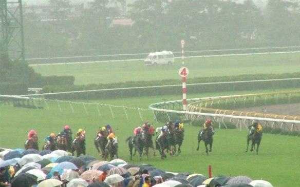 【競馬】 新潟(10週)→東京(8週)で18週連続開催wwwwww