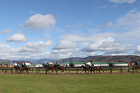 【競馬】 日本競馬界の行く末やいかに  TPPで競走馬の関税も撤廃へ (現在の関税率340万/頭)