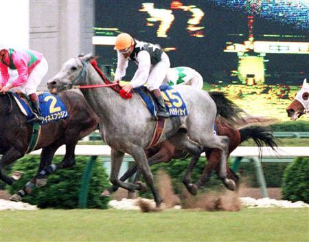 【競馬】 1990年の皐月賞馬ハクタイセイ死す 26歳 父ハイセイコー 同期にメジロライアン、アイネスフウジンなど