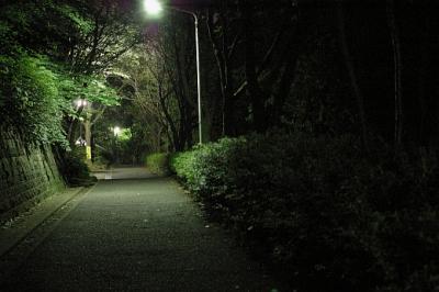 【恐怖】夜道で急に走りだす女追いかけて驚かすの楽しすぎワロタwwwwwwwww