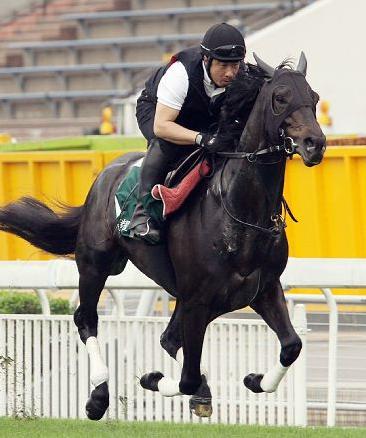 【香港】エイシンフラッシュ、Mデムーロの糞騎乗のせいで負ける