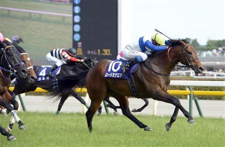 ロードカナロアは日本競馬史上最強短距離馬