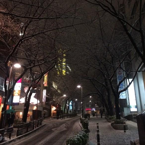 【悲報】トンキン人、雪の積もった渋谷でスキーを始める(画像あり)