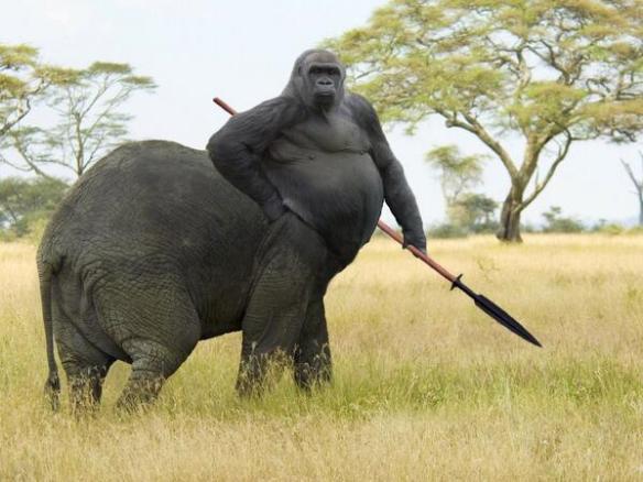 【画像】ゾウとゴリラを融合した結果wwwwwwwwww