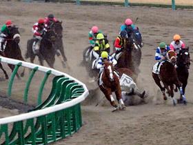 【競馬】 今更、三浦の9頭落馬事件について語るスレ