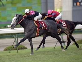 【競馬】 自分の競馬の歴史の中で一番信頼自信もてた軸馬は?