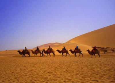 シルクロード、世界文化遺産登録へ … 洛陽から「天山回廊」を経てカザフスタン南東部に至る道路網に沿った33か所の遺跡が構成要素