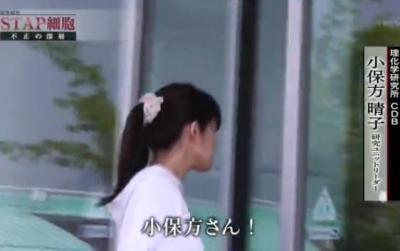 NHKスペシャル 『調査報告 STAP細胞不正の深層』について、小保方晴子氏の弁護士・三木秀夫氏が「集団リンチ」と厳しく非難、強硬な手段も辞さない構え