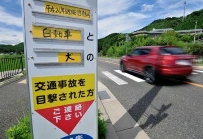 犬の散歩中、横断歩道で犬がはねられる → はねた車は逃走 → 飼い主(58)も右肩などを負傷したため、ひき逃げ事件として異例の捜査が始まる - 兵庫・猪名川町