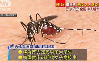 デング熱、新たに横浜・横須賀で2名が陽性反応、新潟で1人が感染の疑い、いずれも東京の代々木公園周辺を訪れる … この3人とは別に、更に少なくとも10人以上がデング熱に感染した疑い