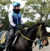 【日本ダービー】 コメート、大健闘の5着! 嘉藤騎手は検量室で男泣き