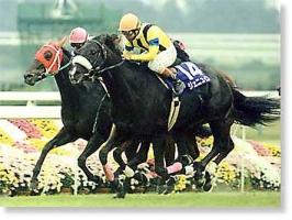 【競馬】 ジェニュインが死亡 95年皐月賞・96年マイルCS勝ち馬
