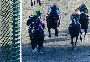 【競馬】 ほらもう2年前ダノンバラードが妨害した馬忘れたろ?