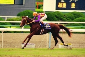 【競馬】 シスタートウショウが死去… 1991年桜花賞勝ち馬