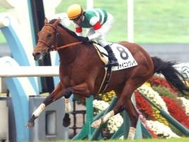 【競馬】 シャイニングレイ、左前脚屈けん炎を発症…
