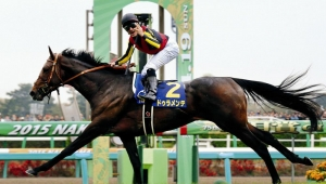 【競馬】 ドゥラメンテ  主な勝ち鞍:皐月賞(GⅠ)、ダービー(GⅠ)、中山記念(GⅡ)
