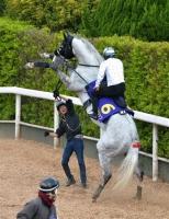 【有馬記念】 ゴールドシップ・北村調教助手「自分なら大逃げをする。この馬が逃げたら無敵」
