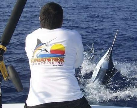 47歳漁師の男性、メカジキにトドメを刺そうと水中銃を撃つ→ 命中したが、カジキの長く鋭い上あごに胸を刺されて死亡
