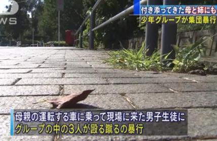 松戸市の少年6人、高校2年の男子生徒を公園へ呼び出し暴行、全治不明の重傷に→ さらに3人が男子生徒の母親(44)や姉(22)にも暴行、母親が肋骨骨折の重傷、姉も全治2週間のけが