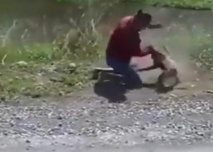一匹のサルにバイクを占拠された持ち主、サルと殴りあいのケンカになり、互角に渡り合う(動画) … 撮影者は終始大笑い