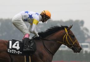 【競馬】 ビッグアーサーの次走がCBC賞か北九州記念