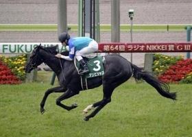 【競馬】 アンビシャス(距離適性1800~2000)、次走は中山記念(2017年2月26日)
