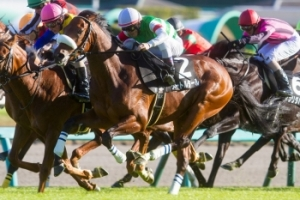 【競馬】 戸田師、メートルダールを戸崎騎手から乗り替わり示唆