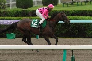 【競馬】 インカンテーション骨折、3カ月以上の休養