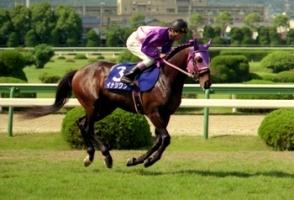 【競馬】 イナリワン死す 32歳