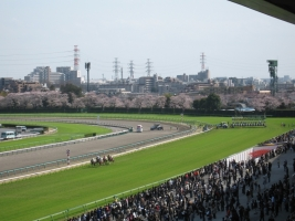 【競馬】 大阪杯→春・天→宝塚の春古馬三冠に行く馬っているのか?