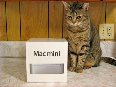 DELLやHPのスリムPC使ってる奴の意味不明さは異常。Mac miniの方が小さくて高性能で安いじゃん