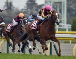 【競馬】 チェッキーノ、屈腱炎発症でクイーンS回避…