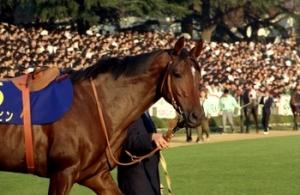 【競馬】 最初は変な名前だと思ったけど、慣れたら全然問題なくなった馬