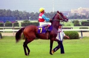 【競馬】 ニッポーテイオーが老衰のため死去 33歳